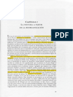 03 Baez Cap 7.pdf