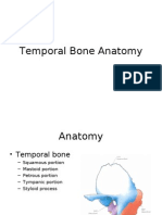 Temporal Bone Anatomy