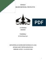 FINAL Referat Hiperbilirubinemia.doc