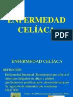 Clase Sobre Enfermedad Celiaca 1211935412289846 9