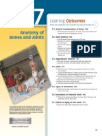 anatomy of bone and joint