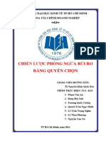 QTRR - Chien luoc phong ngua rui ro quyen chon.pdf