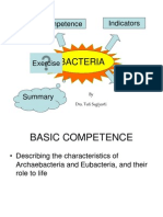 bacteria1.ppt