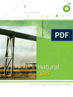 bp_module 09_Natural Gas.pdf