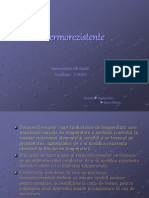 PROIECT TERMO.ppt