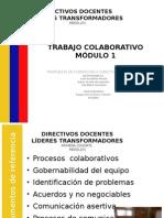 Coordinadores Lideres Trabajo Colaborativo Modulo 1 (1)[1]