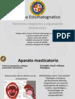 SEMINARIO 1 TERCERO GRADO Protesis