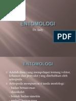 ENTOMOLOGI 1.ppt