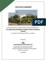 Exe.sumBabasaheb SSKL_Jan2013.pdf