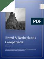 Brazil & Netherlands Hofstede.docx