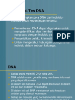 3. Tes DNA.ppt