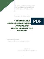 schimbarea in cultura organizationala forma finala.doc