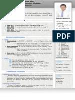bel cv.pdf
