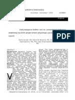 Journal IDAI 1_NoRestriction.doc