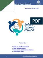 EnlaceLaboral_AreaConocimiento_Noviembre-2013-112013