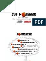 JUS D'ORANGE V8