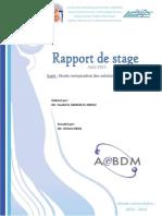Rapport de Stage ESTF