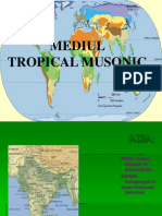 Mediul Musonic