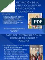 participacion penultimo (1) (1)