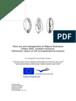 Bogaard__Walker_EU_report_May_2011_compiled.pdf