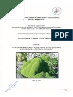 Evaluacion Poblacional Azorella Compacta (Yareta),