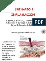 Inflamacion 2