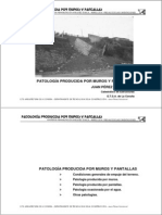 2b-Patologia Muros y Pantallas[1]