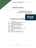MAGIA-DE-LAS-HIERBAS Paracelso.pdf