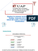 cdocumentsandsettingspc127escritoriosupraeinfrahiodeos-090414110945-phpapp02