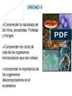 Virus Procarotas y Protistas