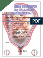 Monografia Rpm Embarazo Prolongado,Cacer de Uetro y Mama 2013