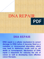 DNA repair-r.ppt