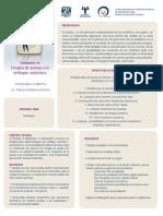 UNAM - Diplomdo Pareja Sistemica