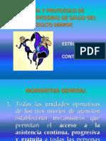 03 MARCO CONCEPTUAL Normas y Protocolos