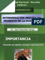 Citologia Vaginal 2007