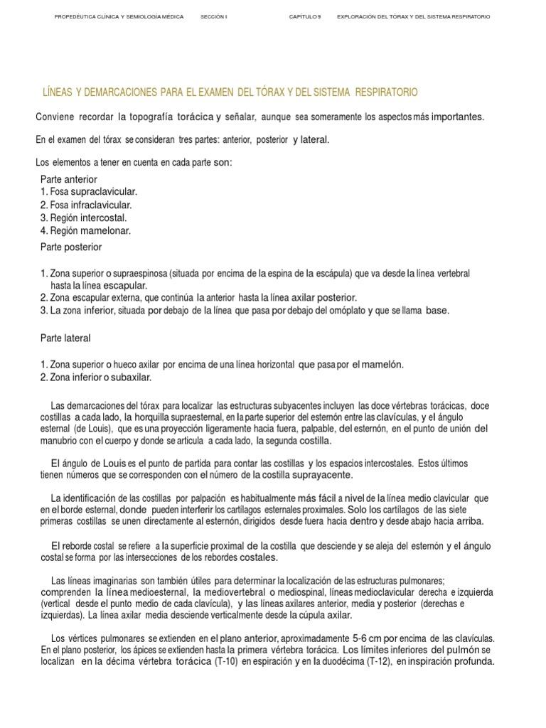 Excepcional Números Vértebras Torácicas Bandera - Imágenes de ...