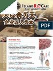 IRC-CNproposal-v500.ppt