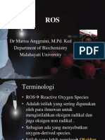 ROS.ppt