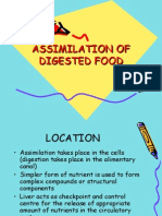 Assimilation of Digested Food