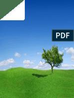 6wallpapers.pdf