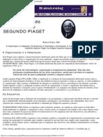 A CONSTRUÇÃO DO CONHECIMENTO SEGUNDO PIAGET