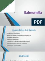 Salmonella, cuidados y más