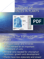 Transport of Substances in Plants