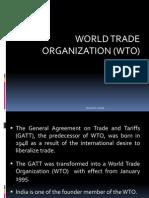 17. WTO.pptx