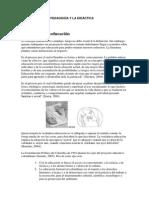 1-ALEX El concepto de.docx
