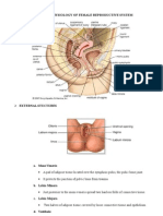 Anatomy & Physiology of Female Reproductive System