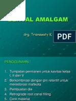 AMALGAM.ppt