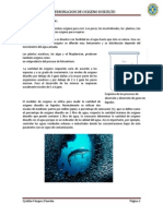 DETERMINACION OD oceanografía