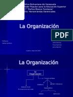 La Organización
