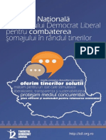 Strategia Nationala a TDL.pdf